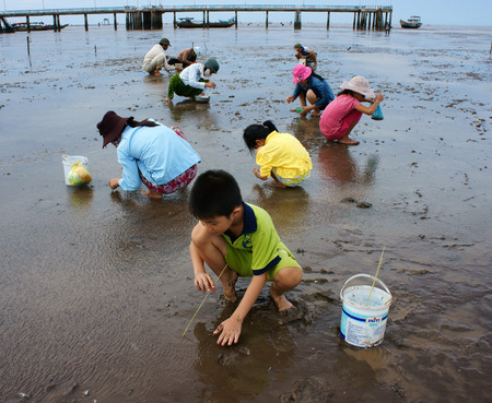 MEKONG DELTA, VIETNAM- JULY 8 Unidentified children, women working on beach when tide going out, people rake black sand to catch sell fish, many child labor at poor countryside, Viet Nam, July 8, 2014