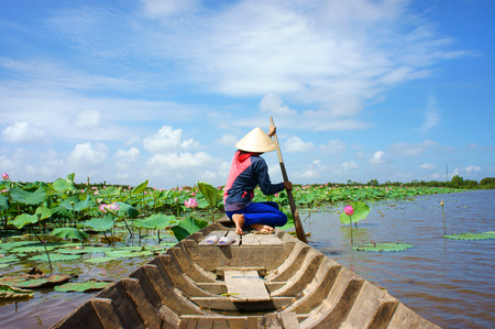 vietnam: Beautiful landscaping of Vietnamese village, woman rowing the row boat to pick lotus flower on waterlilly pond at Mekong Delta