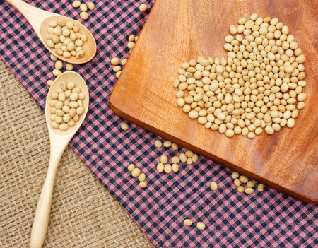 Soybean name Glycine max, Fabaceae family, rich protein, acid amin, vitamin, a nutrition product, to process soymilk, this soy milk supply collagen, estrogen for woman, a kind delicious beverage Stock Photo