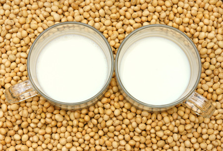 estrogen: Soybean name Glycine max, Fabaceae family, rich protein, acid amin, vitamin, a nutrition product, to process soymilk, this soy milk supply collagen, estrogen for woman, a kind delicious beverage Stock Photo