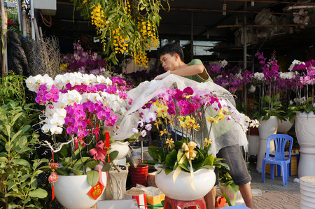 HO CHI MINH CITY, VIET NAM- FEB 9: Spring on Saigon street, outdoor market that show colorful flower on pavement, Tet also lunar New Year is traditional culture of Vietnamese, Vietnam, Feb 9, 2015