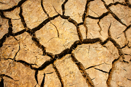 Hay on drought land, amazing arid and cracked ground, climate change made agriculture plantation have to reduct, in summer it very hot, warming is global problem, cause by greenhouse effect