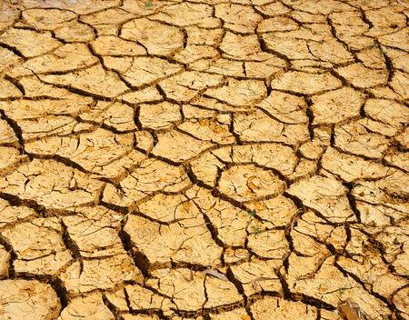 invernadero: Hay en la tierra sequ�a, incre�ble �rido y suelo agrietado, el cambio clim�tico hecho de la agricultura de plantaci�n tiene que reduct, en verano hace mucho calor, el calentamiento es un problema global, causa por el efecto invernadero Foto de archivo