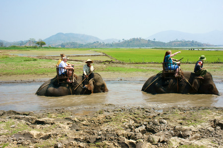 BUON ME THUOT, VIET NAM- FEB 25: Group of tourist traveling Vietnamese countryside, traveler ride elephant, cross rural with green flield, this is Daklaks travel product, Vietnam, Feb 25, 2015
