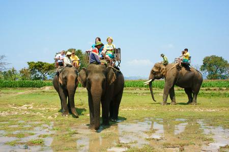 BUON ME THUOT, VIET NAM- FEB 25: Group of tourist traveling Vietnamese countryside, traveler ride elephant, cross rural with green flield, this is Daklaks travel product, Vietnam, Feb 25, 2015