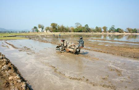 sow: DAK LAK, VIET NAM- FEB 2: Asian farmer working on rice field, Vietnamese man plough paddy plantation for new crop by tractor, repair soil for sow rice in hot day, Daklak, Vietnam, Feb 25, 2015