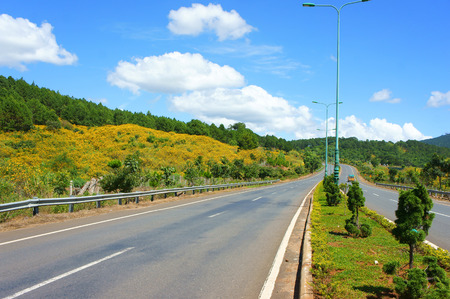 dalat: Dalat highway, beauty road cross pine forest with wild flower under blue sky and cloud, the street at Vietnamese countryside with fresh air, good surface, traffic can fast