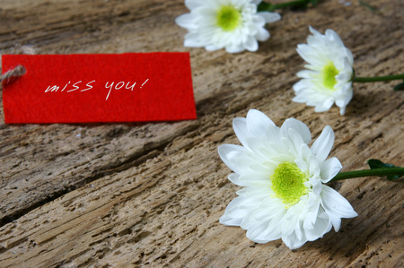 miss you: Love background with love you, miss you message, feeling when confession on abstract wooden background, can use on valentine day, mother day or celebrate love day