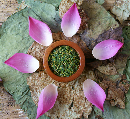 lotus blossom: Collection of lotus, pink lotus flower, green seed, white lotus seed in fresh and dry, herbal tea of this flora, with amazing, abstract concept in vibrant color, this food make healthy , good sleep