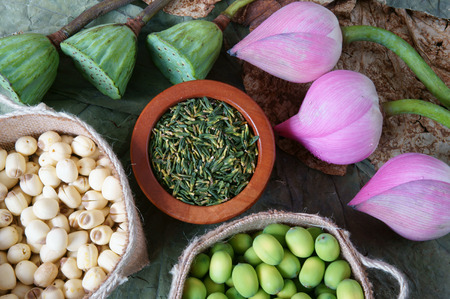 abstract seed: Collection of lotus, pink lotus flower, green seed, white lotus seed in fresh and dry, herbal tea of this flora, with amazing, abstract concept in vibrant color, this food make healthy , good sleep