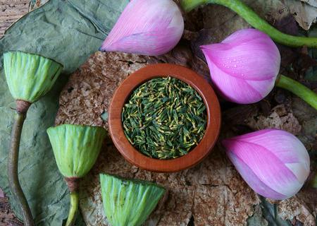 graine lotus: Collection de lotus, fleur de lotus rose, graines vert, blanc graines de lotus en frais et sec, tisane de cette flore, avec �tonnante, concept abstrait dans des couleurs vives, cette nourriture saine faire, un bon sommeil