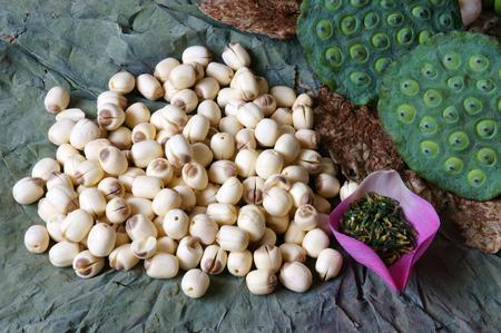 鮮やかな色、この食品の驚くべきは、抽象的な概念で、この植物のハーブティーを作る健康的な良い睡眠、ロータス、ピンクの蓮の花、緑の種子のコレクションのフレッシュで蓮の実を白、乾燥 写真素材 - 42116885