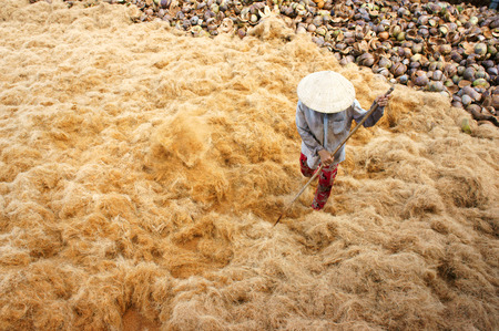 BEN TRE, VIET NAM- JUNE 1: Group of Asian worker work hard at coconut fiber trade village, Vietnamese woman working in dust, this is material area from coir of Mekong Delta, Vietnam, June 1, 2015