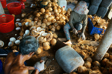 eating area: BEN TRE, VIET NAM- JUNE 1: Group of Asian worker working at coconut workshop to process coconut fruit, Vietnamese people split copra, material for candy and oil, Mekong Delta, Vietnam, June 1, 2015