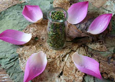 graine lotus: