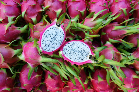 canastas con frutas: Comida vietnamita para la exportación, dragón fruta, producto agropecuario del Binh Thuan, Vietnam, la cáscara de color rosa, cesta de frutas de embalaje para la venta, esta fruta tropical también nombrar undatus Hylocereus, Pitahaya