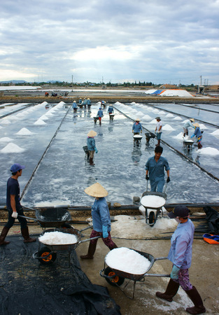 salt marsh: KHANH HOA, VIET NAM- AUG 25: Group of Asia worker working on salt marsh, crowded rake salt in heap and transfer by wheel barrow, Vietnamese people work in cloudy day, Khanhhoa, Vietnam, Aug 25, 2015