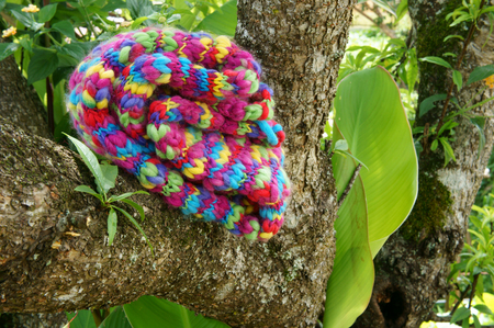 Colorful wollen scarf on green tree trunk on winter day, a sudden gift, beautiful knitted handmade make warm in cold day
