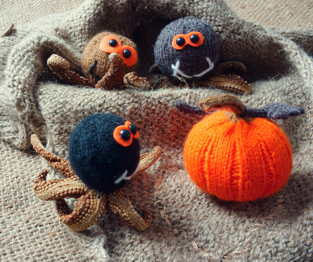 woollen: Halloween background with handmade pumpkin, funny spider, with knitted decoration for holiday seasonal, scary festival on october, orange is symbol color, so amazing with starfish, woolen spider