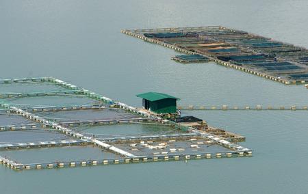 fischerei: Fischzucht bei Nam Ka See Daklak, Vietnam, große Aquarium auf See, Landwirt, die Arbeiten am ersten Tag, Fischerei sehr entwickelt in Vietnam Lizenzfreie Bilder