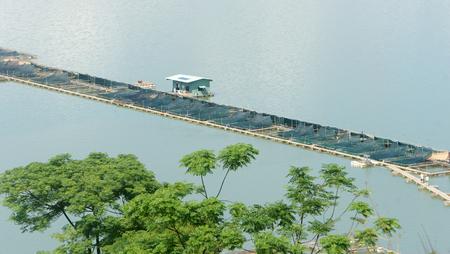 fischerei: Fischzucht bei Nam Ka See Daklak, Vietnam, gro�e Aquarium auf See, Landwirt, die Arbeiten am ersten Tag, Fischerei sehr entwickelt in Vietnam Lizenzfreie Bilder