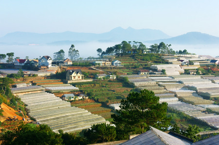 green house effect: Development of floriculture industry at Dalat, Lam Dong, Vietnam, with many greenhouse and high power consumption can make increase CO2, green house effect and climate change Stock Photo