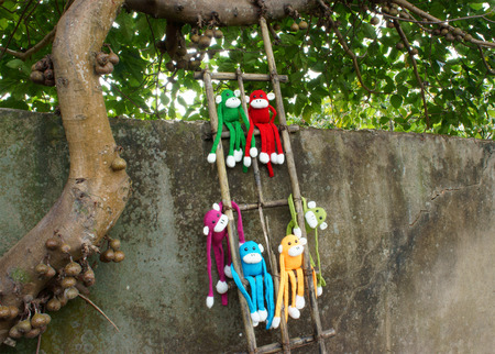 woollen: Amazing scene with group of knitted monkey climb tree, 2016 is year of the monkey, monkey symbol in colorful yarn to happy new year
