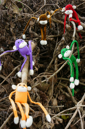 woollen: Amazing scene with group of knitted monkey climb tree, 2016 is year of the monkeys, monkey symbol in colorful yarn to happy new year Stock Photo