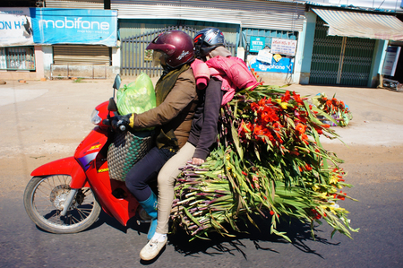 insecure: DONG NAI, VIET NAM- FEB 6: Danger traffic on highway, couple transport overload flower and moving on street, insecure situation by vehicle as motorbike increase in spring, Dongnai, Vietnam, Feb 6,2014 Editorial