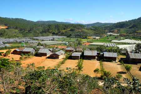 settle: DA LAT, VIET NAM- DEC 30: Amazing scene at Dalat countryside, group of wooden house among agriculture field, housing for settle of poor Vietnamese, landscape of poverty residence, Vietnam, Dec 30,2015