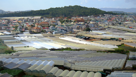 dalat: Dalat flower village, a large area for flower at Vietnam, group of green house with high tech agriculture, Da Lat is big bloom granary for country by good natural condition Stock Photo
