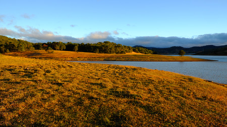 dalat: Beautiful panorama landscape at Dalat countryside, Vietnam, amazing wide grass in yellow morning, lake among pine forest, mountain far away, pine tree, wonderful scene for Da Lat, Viet Nam travel Stock Photo
