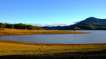 Beautiful panorama landscape at Dalat countryside, Vietnam, amazing wide grass in yellow morning, lake among pine forest, mountain far away, pine tree, wonderful scene for Da Lat, Viet Nam travel Stock fotó