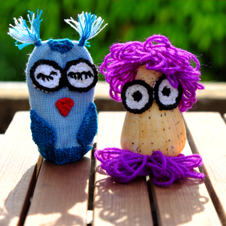 conch shell: colorful owls puppet knit from yarn, owl make from conch shell, diy toy, funny creative on outdoor green background