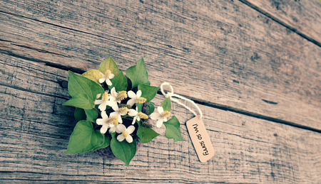 Sorry Background With White Tiny Flower On Old Wooden, Im So Sorry Text Is  Message