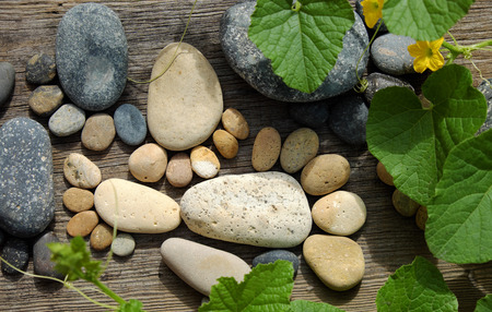 Abstract cute concept on wood background from pebbles, amazing arranged boulder to family of footprint, awesome shape from pebblestone