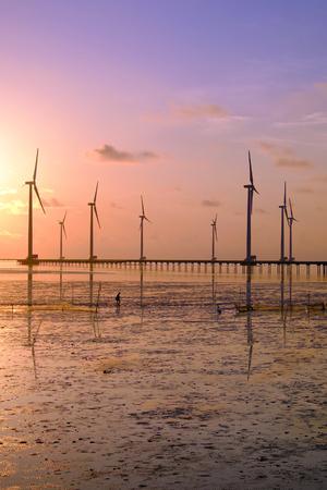 ベトナム ・ メコンデルタのバクリエウ風力発電の風力タービンのグループ。日の出 Baclieu 海辺で風車、ベトナム産業のクリーンなエネルギーを作る 写真素材