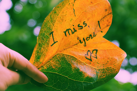Woman hand hold old leaf with the word is i miss you, miss u message for far away lover on green background