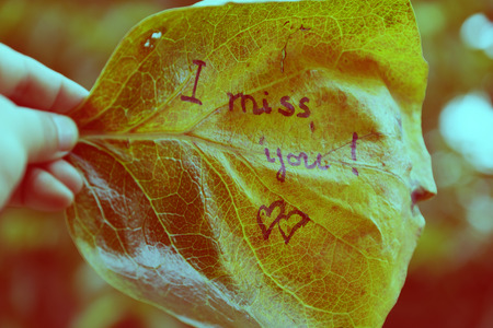 Woman hand hold old leaf with the word is i miss you, miss u message for far away lover on vintage background