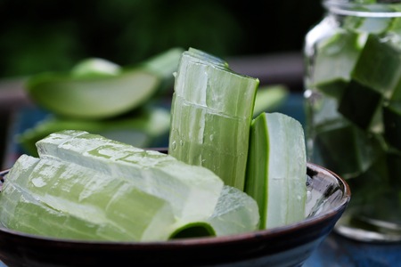 Slice from aloe vera leaf, a kind of botany, herb medicine that useful for health as skin care, organic cosmetic, antimicrobial....