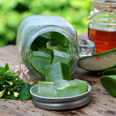 Nutrition food from aloe vera leaf and honey, a nature cosmetic for skin care from herb, also   use as medicine for health, sliced of aloe and honey on outdoor green background Stock Photo