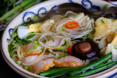 bean sprouts: Homemade Vietnam food, egg noodle soup with wontons, colorful food ingredient for this eating as egg, pork, broth, shallot, bean sprout, agaric, vegetable Stock Photo
