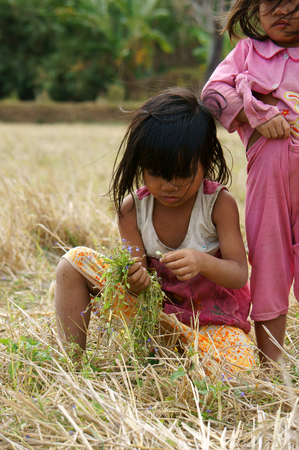 unsafe: VIET NAM, BUON ME THUOT-  DEC 31, 2012: Two Asian children with pretty face looking vegetable on dry grass meadow, poor child at desert countryside, Vietnam