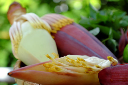 close uo: Close uo of banana flower on green background, a kind of popular vegetable that use in many Vietnamese food