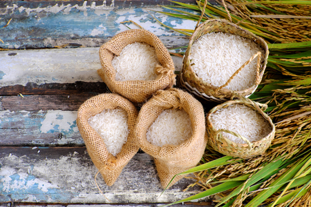 ration: Close up of paddy grain and rice seed on wooden background, sheaf of rice in yellow and basket of grains