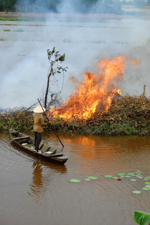 Asian woman on row boat, burn dry tree, dried leaves to cleaning field in flooded season, landscape at Mekong Delta, Vietnam after crop, burning flame on causeway, smoke fly to environment