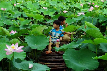 ドンタップ、VIET NAM-2017 年 9 月 2 日: アジアのこどもは小さな橋の上に座るし、ベトナム ・ メコンデルタにおける夏季野外活動と蓮の池、美しい田