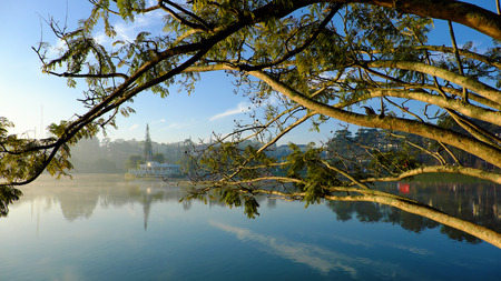 Thuy Ta restaurant of Da Lat city view from branch of flamboyant tree, old and small restaurant also symbol of Dalat that located on Xuan Huong lake Stock Photo