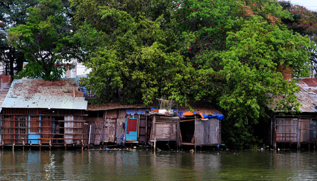 Amazing scene of riverside house under big tree with large canopy cover old downgrade house from corrugated metal sheet that rusty, blue wooden window, Ho Chi Minh city Stock Photo