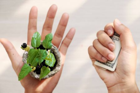 A human hand hold seedlings white another hold tight money, the choice between environmental protection or personal benefit, concept focus on plant, blurred background on white from top view Imagens - 128001720